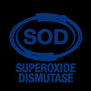 超級抗氧化酵素